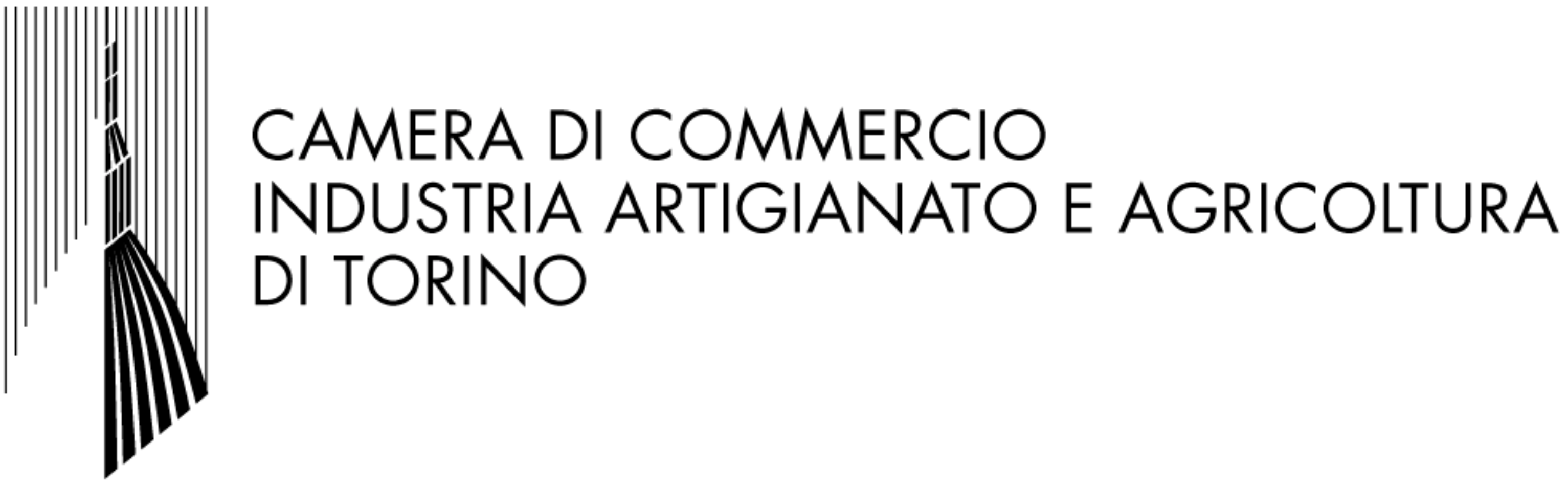 CCIAA Torino
