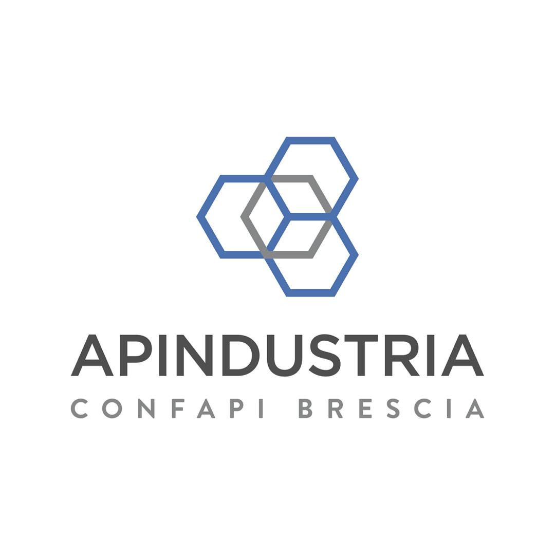 Apindustria BS 21